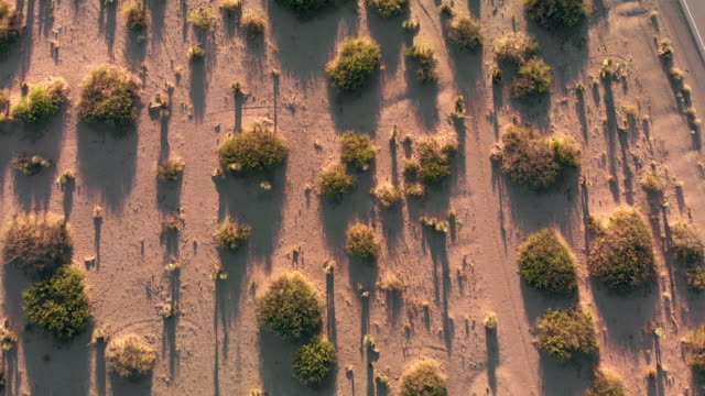 aerial drone view of a narrow lonesome desert highway stretching from west texas to new mexico - ovest video stock e b–roll