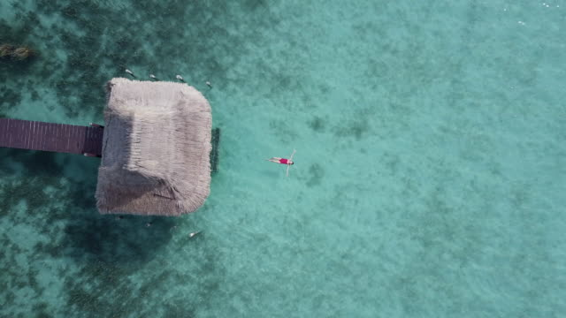 aerial drone view of a woman floating and swimming on bacalar lagoon, mexico. - opalenizna filmów i materiałów b-roll