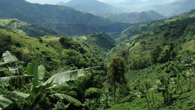 vídeos y material grabado en eventos de stock de vista aérea de drones de bosques, montañas y colinas verdes ondulantes - colombia
