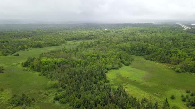 Aerial drone view of Green Belt on a Summer Day in Ottawa, Ontario