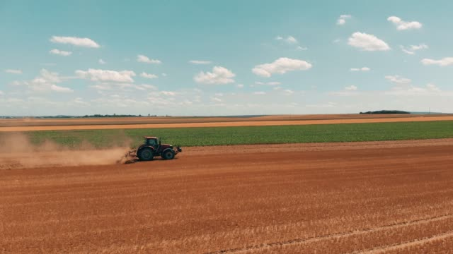 aerial drone view of red tracor working in wheat field. agriculture and environment in european union. - trattore video stock e b–roll
