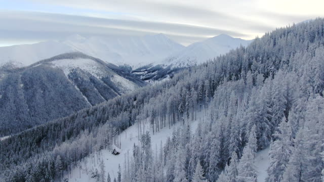 aerial drone view of snowy mountain landscape and forest - polonia video stock e b–roll