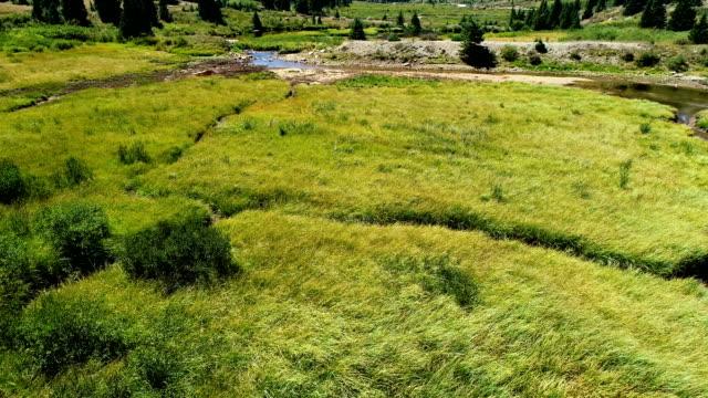 vídeos de stock, filmes e b-roll de vista aérea drone acima prados verdes e rios e córregos ventosos - independence pass