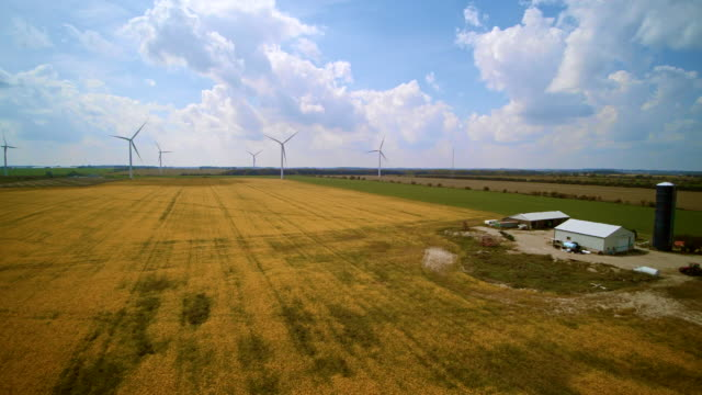 Aerial drone view to the wind power plant in the middle of bean fields in Ontario, Canada. video