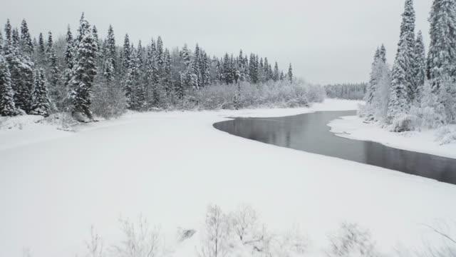 凍った森の中のアメージングワイルドリバーの上空飛行 - シベリア点の映像素材/bロール