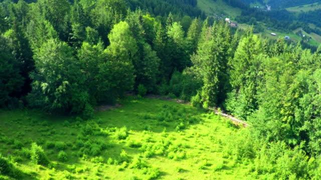 Aerial Flight in Carpathians Mountains. video