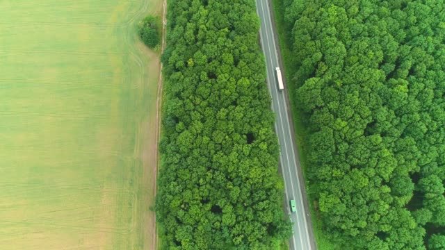 Aerial flight over the lorries driving along the road surrounded by forest. 4K.