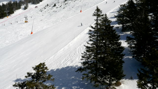 Aerial - Flight past trees at ski resort video