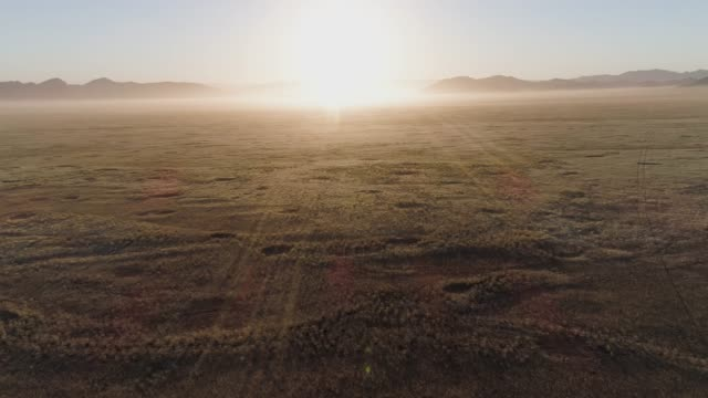 4K aerial fly over sunset view of the Koakoland savannah region of the Namib desert showing the famous fairy circles, Namibia