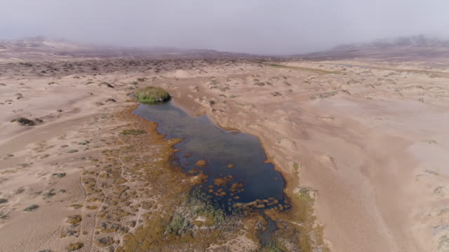 vídeos de stock e filmes b-roll de 4k aerial fly over view of the quick sands oasis in the namib desert, skeleton coast,namibia - seco