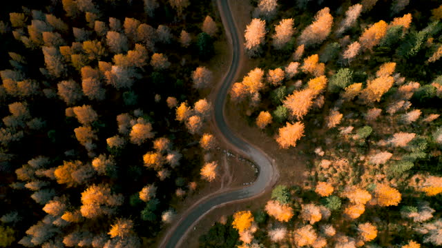 Aerial flying above alpine mountain road, dolomites video