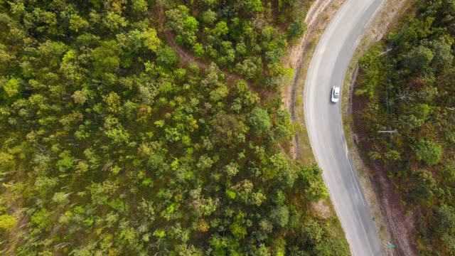 vidéos et rushes de aérien, volant au-dessus de la jungle avec la route et la voiture blanche conduisant le long de la route. - un seul objet