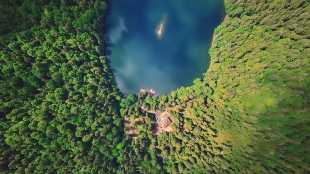 Aerial flythrough of beautiful mountains and forest and blue lake. Vertical view from a bird's eye view video