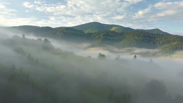 aerial nebligen morgen über waldlandschaft - slowakei stock-videos und b-roll-filmmaterial