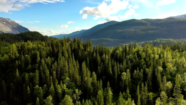 aerial footage beautiful nature norway - fiordo video stock e b–roll