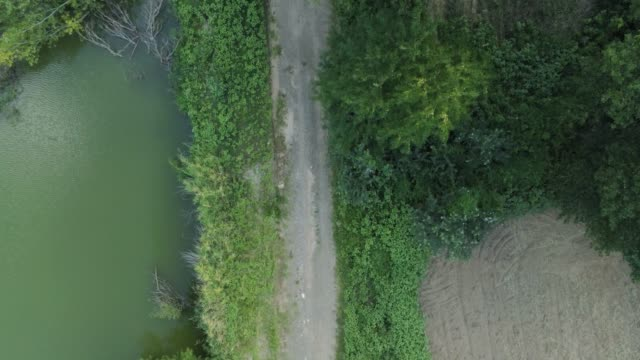 aerial footage - birds eye view - flying forwards over a dirt road next to a river video