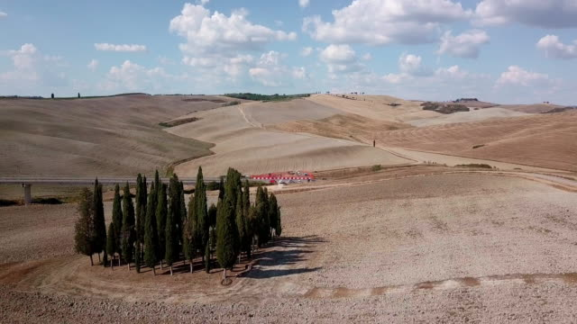 Aerial footage of a group of cypresses in Val d'Orcia, Tuscany, Italy video
