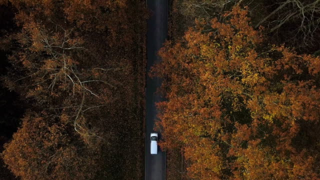 Aerial footage of cars on the road in the woods Aerial footage of cars on the road in the woods country road stock videos & royalty-free footage