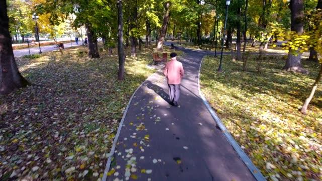 Aerial footage of elderly man walking in the park in autumn video