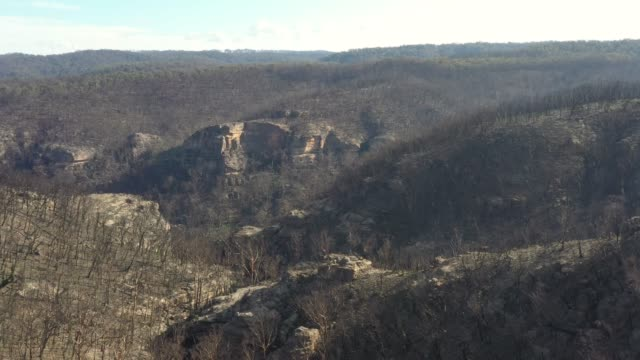 Aerial footage of forest regeneration after the severe bushfires in The Blue Mountains in Australia video