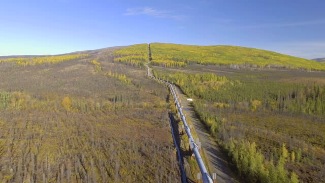 aerial footage of the alaska oil pipeline in the fall season - трубопровод стоковые видео и кадры b-roll