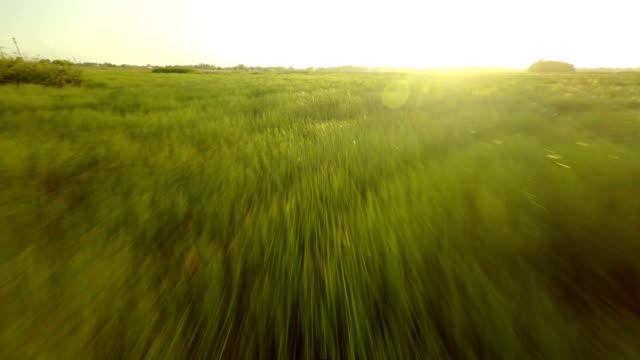 Aerial footage of the prairie watersheds video