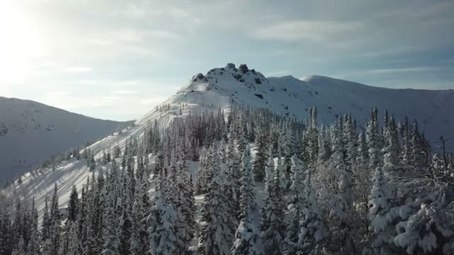 Aerial from drone man skier ski touring in the snowy mountains uphill in a line.