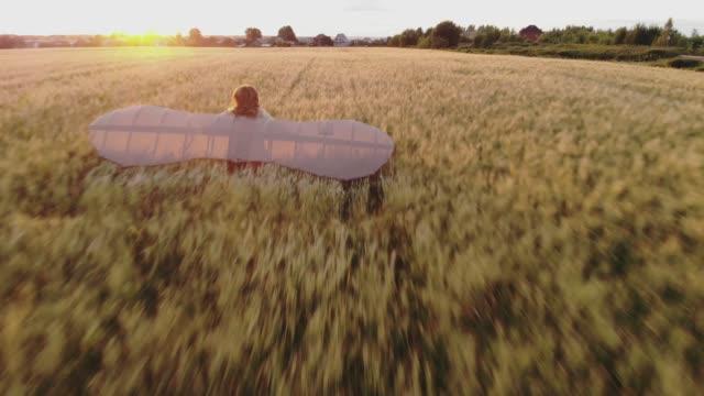 vidéos et rushes de aérien : fille avec des ailes fonctionnant par le champ de blé, rêvant de voler. da vinci ailes - aile d'avion