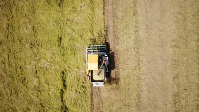 aerial harvesting working on field - биомасса возобновляемая энергия стоковые видео и кадры b-roll