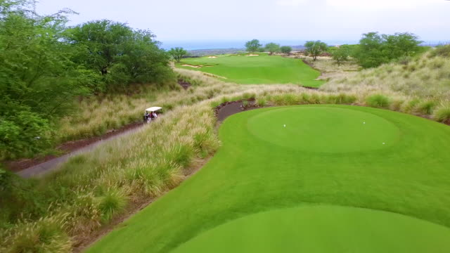 Aerial - Hawaii Golfers video