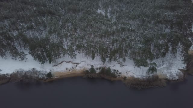 aerial horizontal footage of russian forest with trees, spruces and lake in winter. - monti urali video stock e b–roll