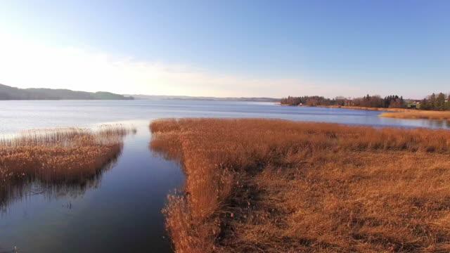 航空写真: 湖「ワギンガー参照してください」、春先に、バイエルン州 - 湿地草点の映像素材/bロール