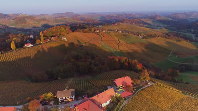 Aerial landscape of Famous Heart shaped wine road, vineyards and fields in Slovenia, view from Spicnik near Maribor