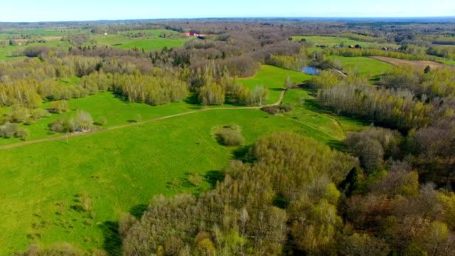antenn: äng och skog under våren - land bildbanksvideor och videomaterial från bakom kulisserna