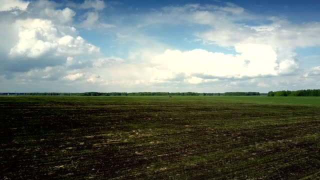 aerial motion from plowed to green field under cloudy sky