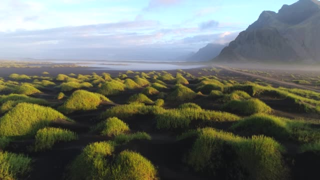 4k aerial movie summer scene of black beach sand and mountain vestrahorn in hofn, iceland - podziw filmów i materiałów b-roll