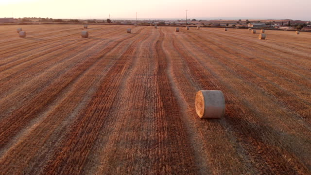 Aerial of a field with of wheat bales