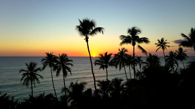 Luftfahrt eines erstaunlichen tropischen Sonnenuntergangs mit Palmen und Strand, La Romana, Dominikanische Republik – Video