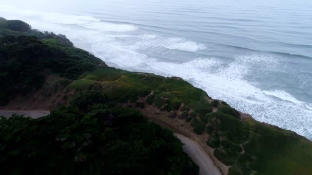 Aerial of Beach video