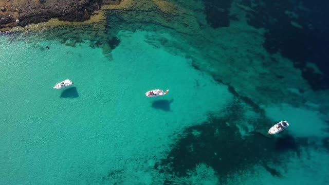 Aerial of Boats and Yachts on Turquoise Mediterranean Sea in Mallorca