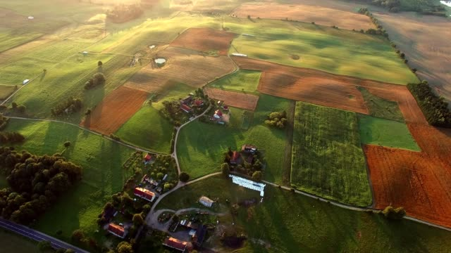 aerial of farmland scenic landscape at sunrise - польша стоковые видео и кадры b-roll