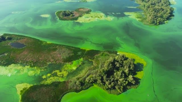 vídeos y material grabado en eventos de stock de aérea de islas en río ancho contaminado con algas verdes - nocivo descripción física