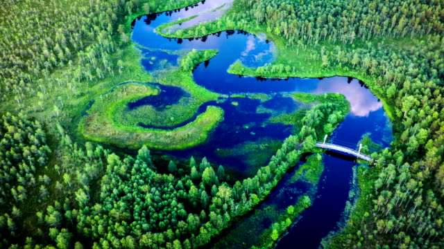 Aerial of meandering river in Sweden video