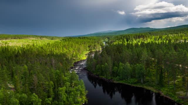 antenn av floden omgiven av boreala skogen - norrbotten bildbanksvideor och videomaterial från bakom kulisserna