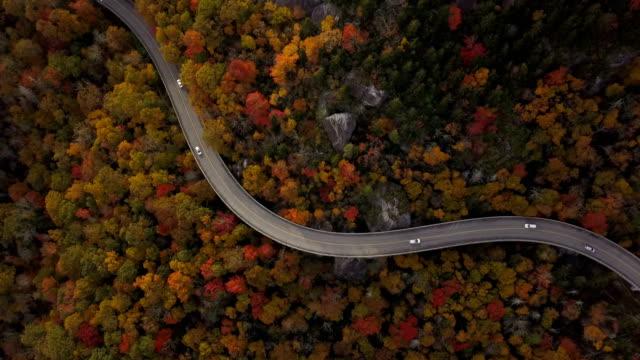 aerial-uttaget på vägen genom skogen - bergsrygg bildbanksvideor och videomaterial från bakom kulisserna