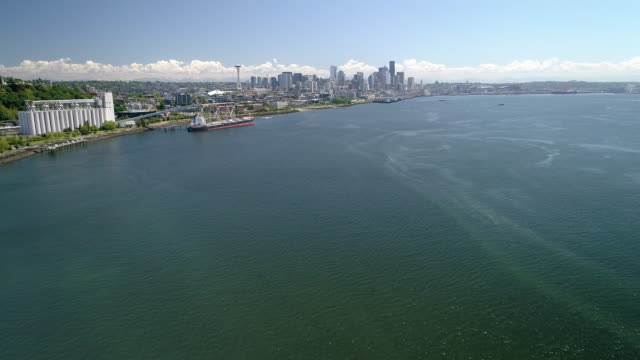 Aerial of Seattle, Washington from Elliot Bay with Waterfront Ocean View of City Skyline video