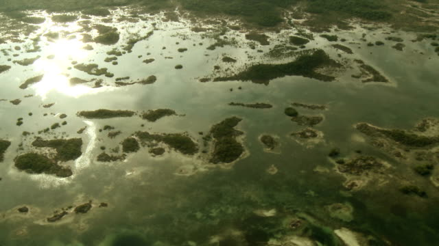 Aerial of swampy archipelago 1 video