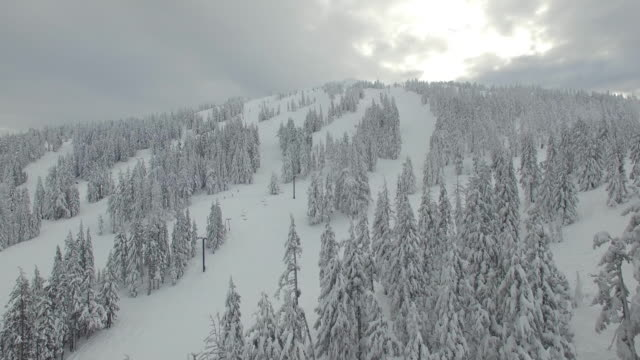 Aerial Oregon Mt Bachelor video