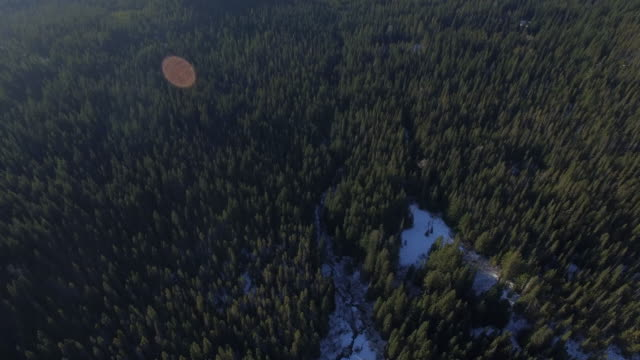 aerial oregon mt hood - trillium stock videos & royalty-free footage