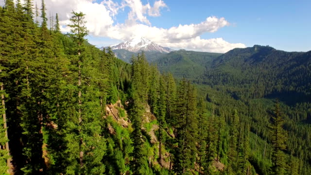 Aerial Oregon Mt Jefferson video